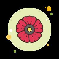 Poppy Flower icon