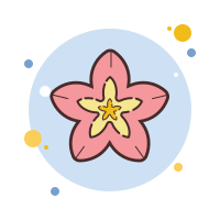 Spa Flower icon
