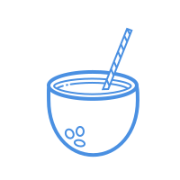 coconut cocktail icon