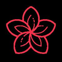 spa flower icon