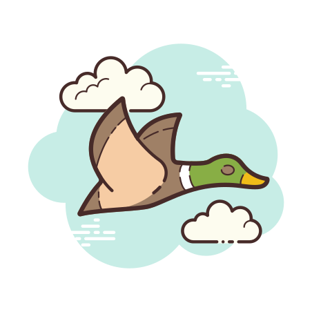 Flying Duck icon in Cloud