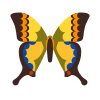 Motyl Machaon icon