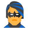 Nightwing icon