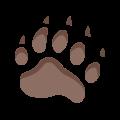 Bear Footprint icon