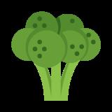 Brokuły icon