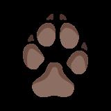 Ślad psa icon