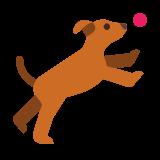Dog and Ball icon