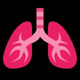 Płuca icon