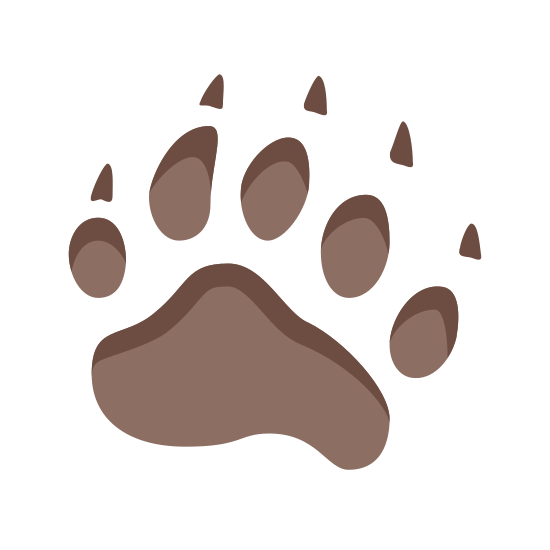 Bear Footprint icon. The bear footprint icon, a clear profile of a bear paw print. The bear may not have been bearing weight as the print from the back of the paw is not visible. This bear clearly had deadly claws.