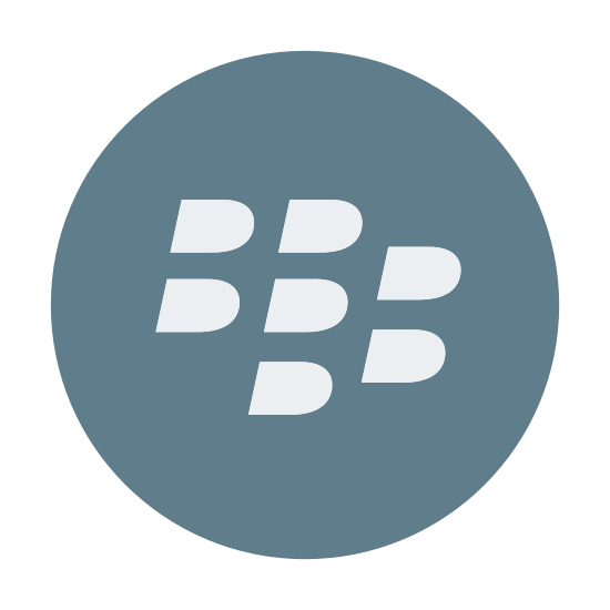 Blackberry App World icon. It's a logo of Blackberry App World reduced to the blackberry icon. The icon is enclosed by a circle the borders the logo. It pretty much looks like the same Blackberry icon on the back of all of the blackberry cell phones.