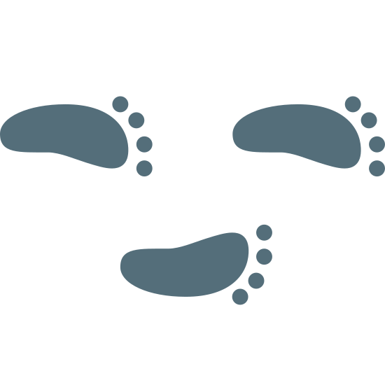 Foot Step icon