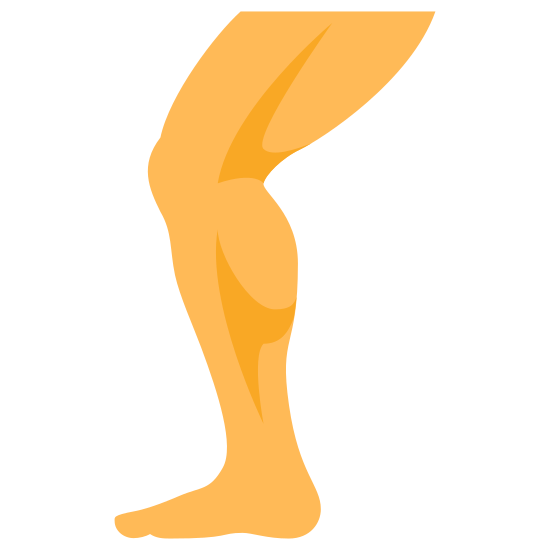 Leg icon. This is a leg from the top of the thigh down to the foot. The foot is facing left and the knee is bent so that the calf and thigh are at a slight angle.