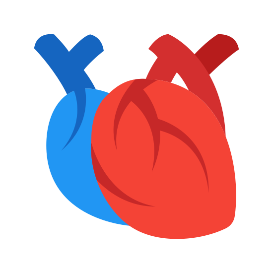 Medical Heart icon. This is an icon representing a medical heart. It is a more realistic view of a heart, showing arteries and a correct heart shape which looks like a peach. The arteries poke out from the top of the heart.