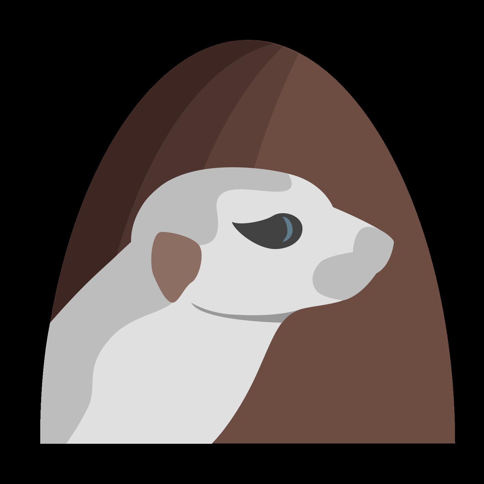 Suricate Lunette icon