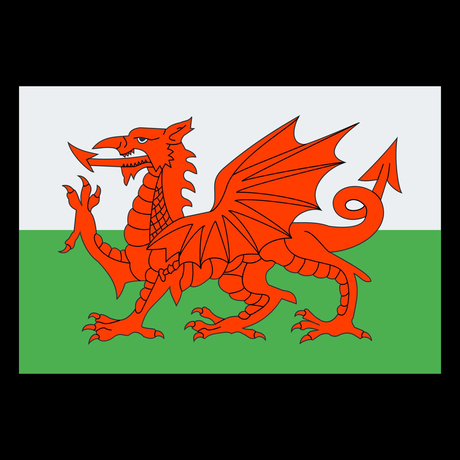威尔士 icon
