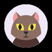 Cat Profile Picture icon