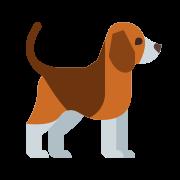Pies icon