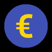 Euro icon