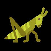 Konik polny icon