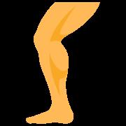 Leg icon