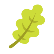 Leaf Outline icon