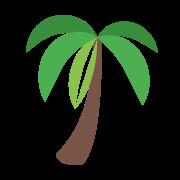 Palma icon