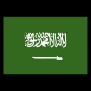 Arabic Flag icon