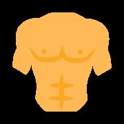 Torse icon
