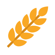Grain and Cereal Products icon