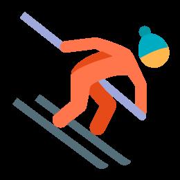 Narciarstwo alpejskie icon