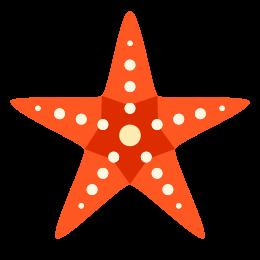 Rozgwiazda icon