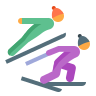 Nordic Combined Skin Type 2 icon