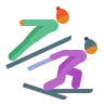 Nordic Combined Skin Type 3 icon