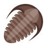 Trilobite icon