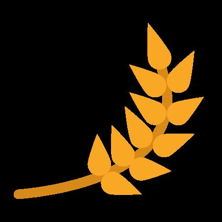 Barley icon in Color