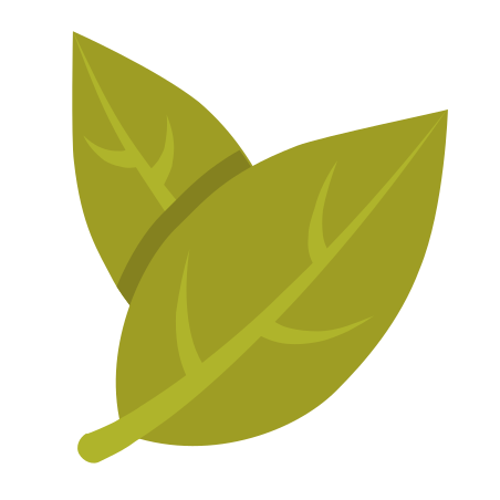 Bay Leaf icon