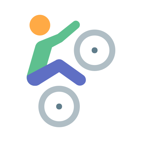 Bmx Skin Type 2 icon in Color