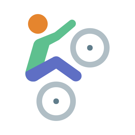 Bmx Skin Type 3 icon in Color