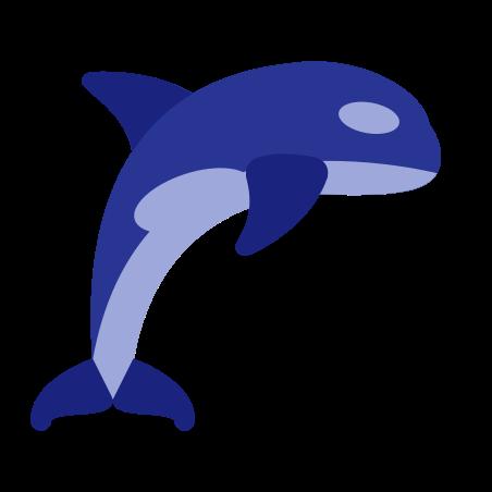 Orca icon