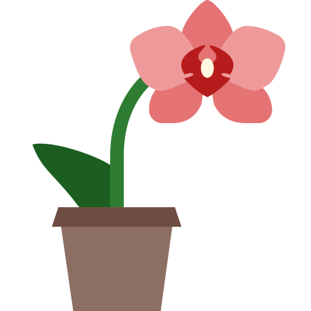 Orchid icon in Color