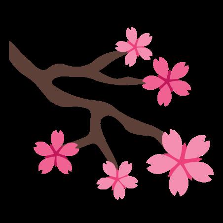 樱花 icon