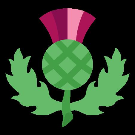 Chardon écossais icon