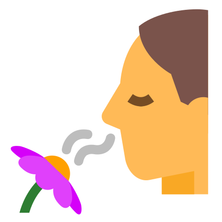 Smelling A Flower icon