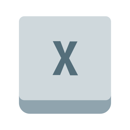 X Key icon