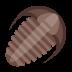 Trilobite icon