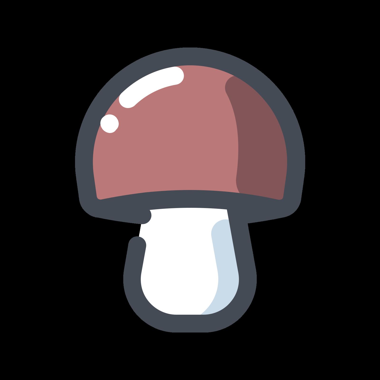 Boletus Mashroom icon