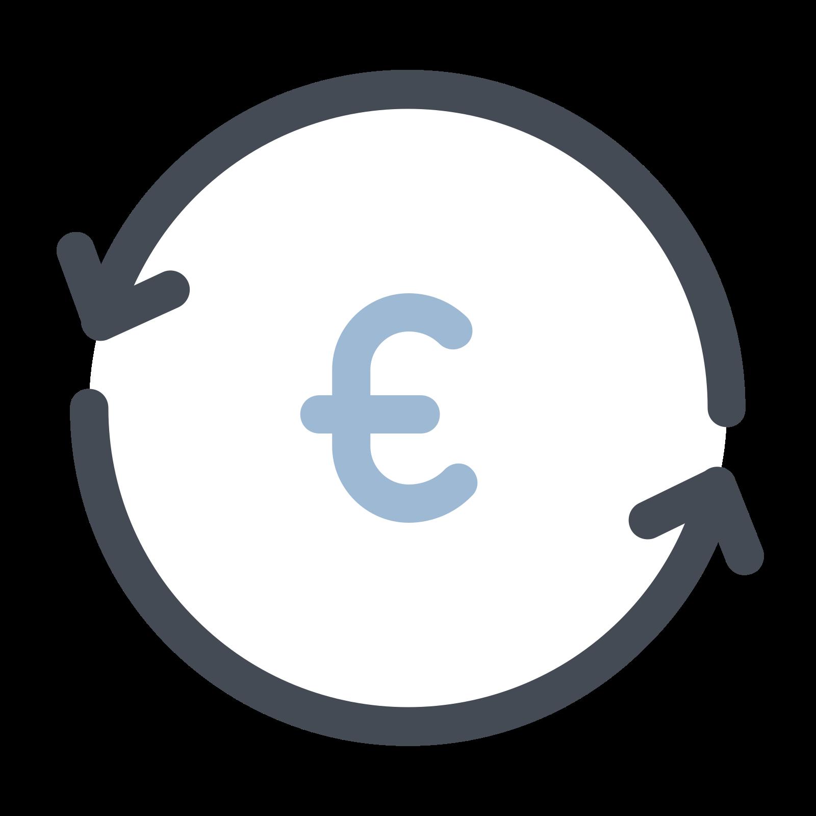Wymień Euro icon