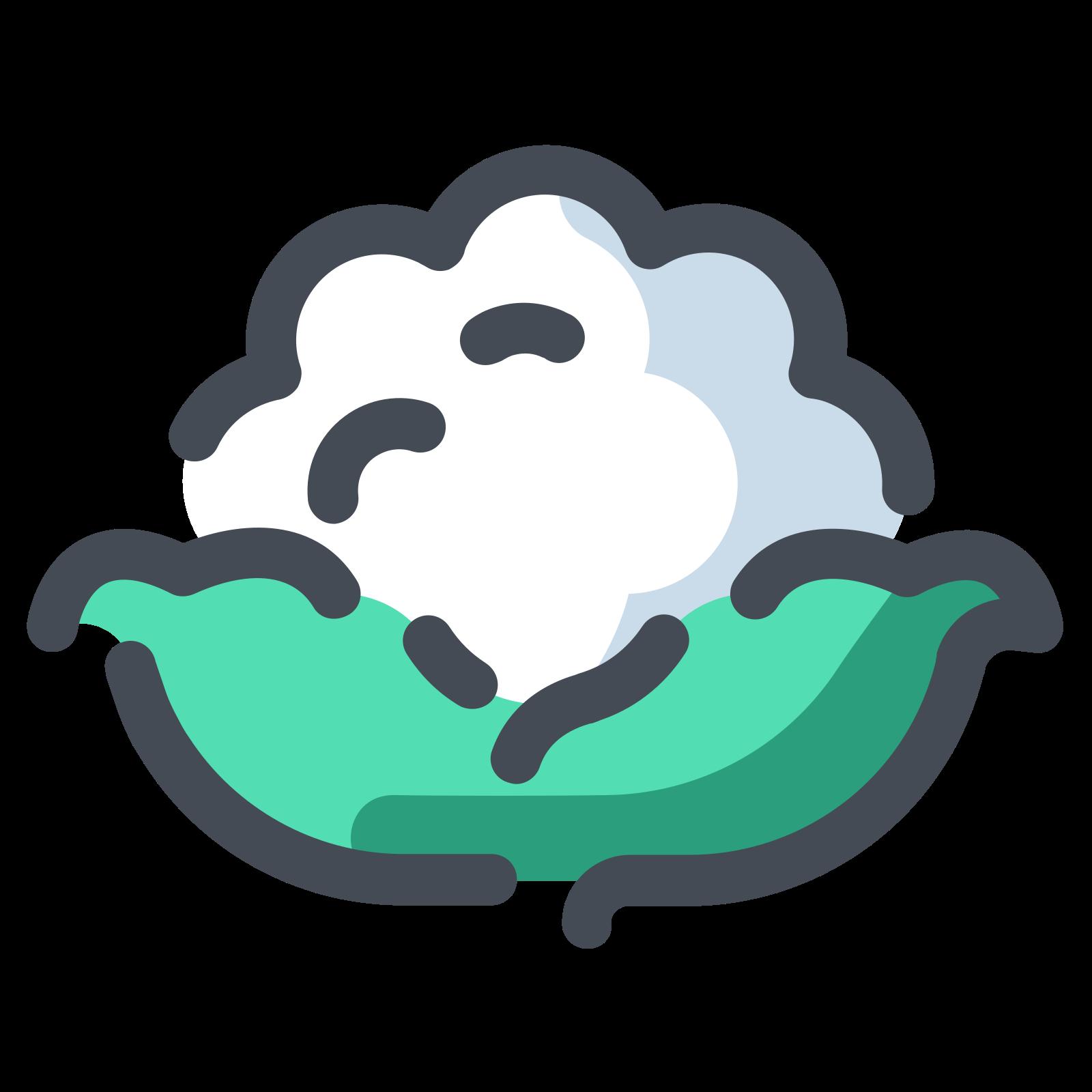 White Cauliflower icon