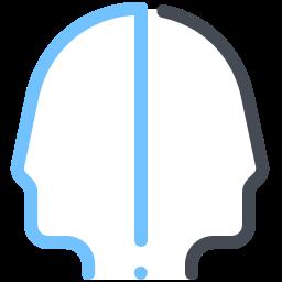 Bipolar Disorder icon