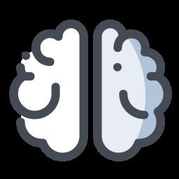 Cerveau icon